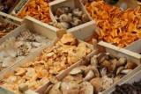 Кто не может есть грибы: советы врачей